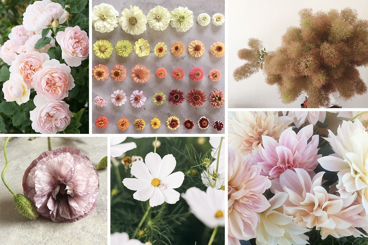 What flowers should you choose for your eco wedding?