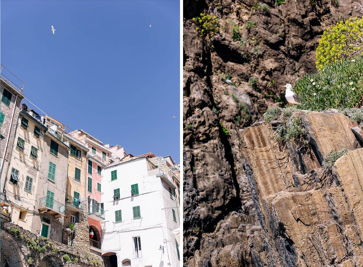 Houses of the little town of Riomaggiore in Cinque Terre